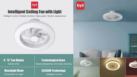 Youpin Yeelight Ceiling Fan with Light Ventilator Lamp